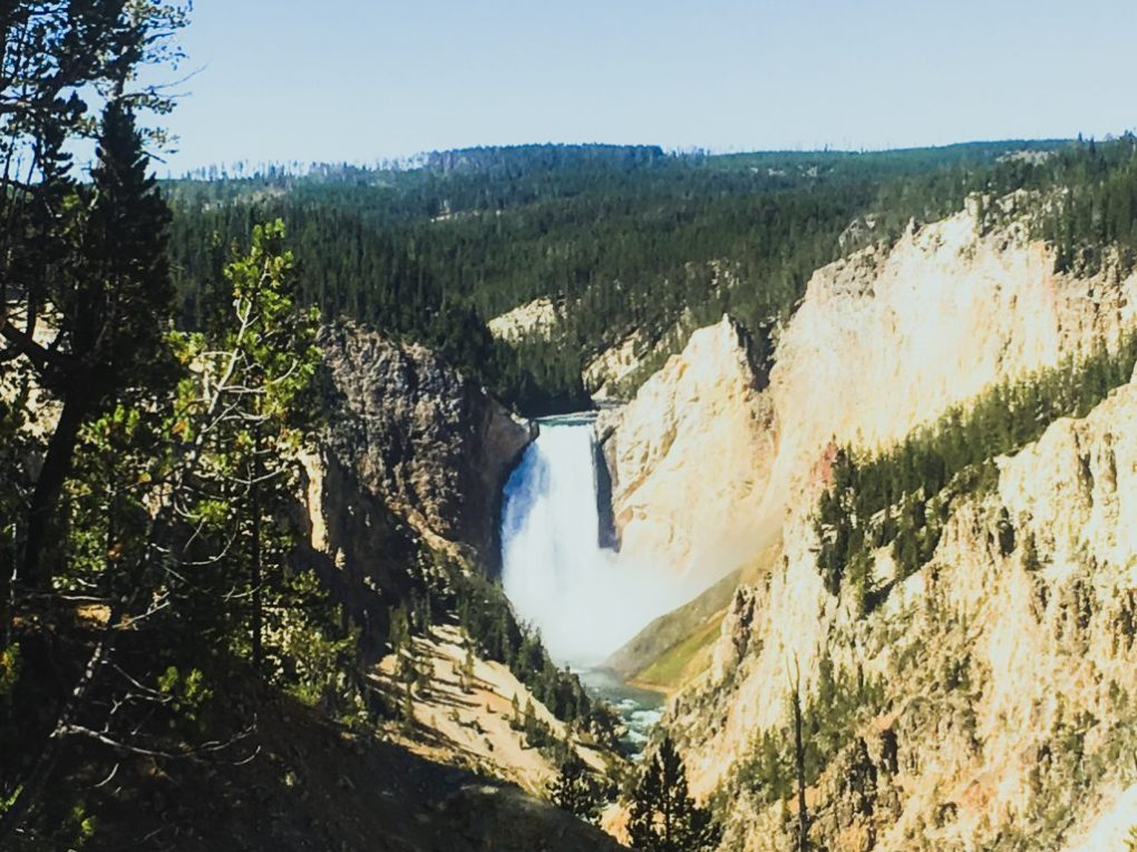 The Grand Canyon of Yellowstone2 days in yellowstone