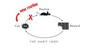 behavior replacement