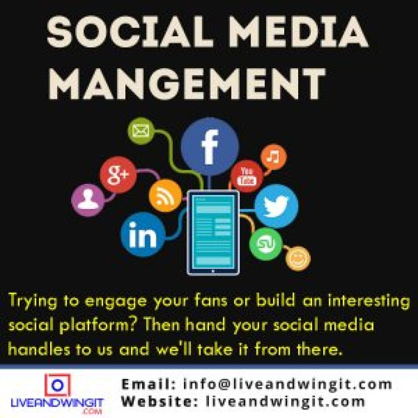 SOCIAL MEDIA MANAGER IN NIGERIA