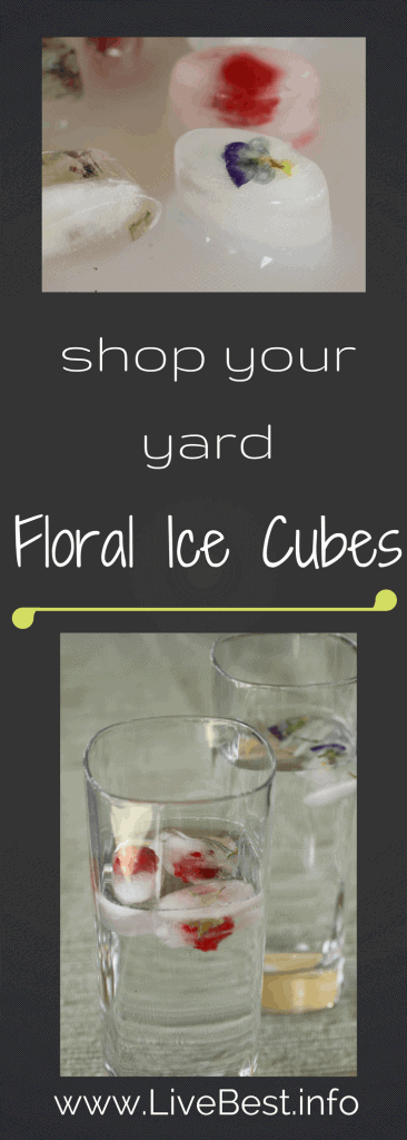 Floral Ice Cubes | Don't you agree pretty taste better? Load your trays with berries, herbs and edible flowers. Extended pinky is optional. www.LiveBest.info