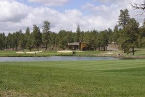 Flagstaff Golf Communities - Forest Highlands