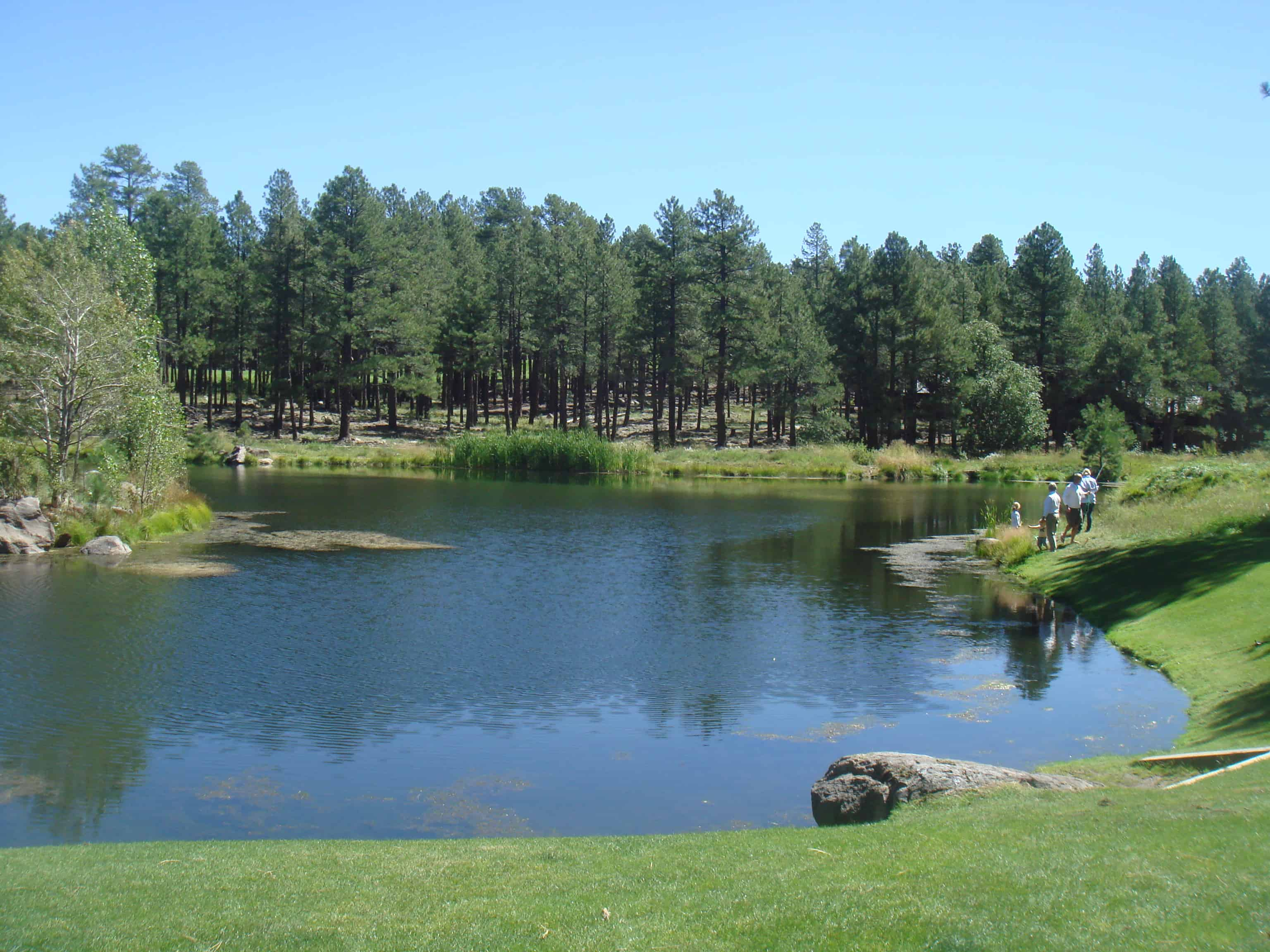 Forest Highlands Golf Club In Flagstaff Az Scottsdale