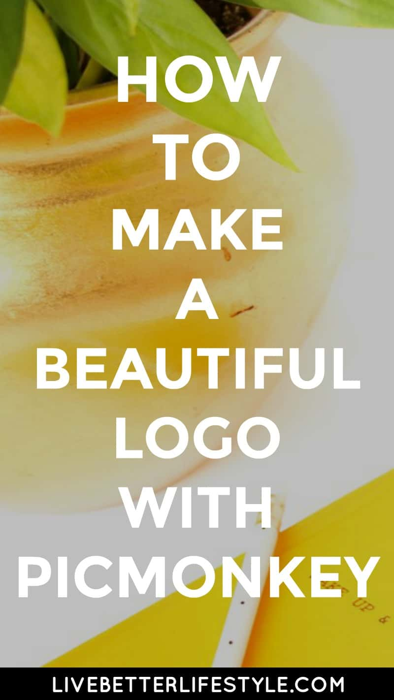 how to make a professional logo with picmonkey
