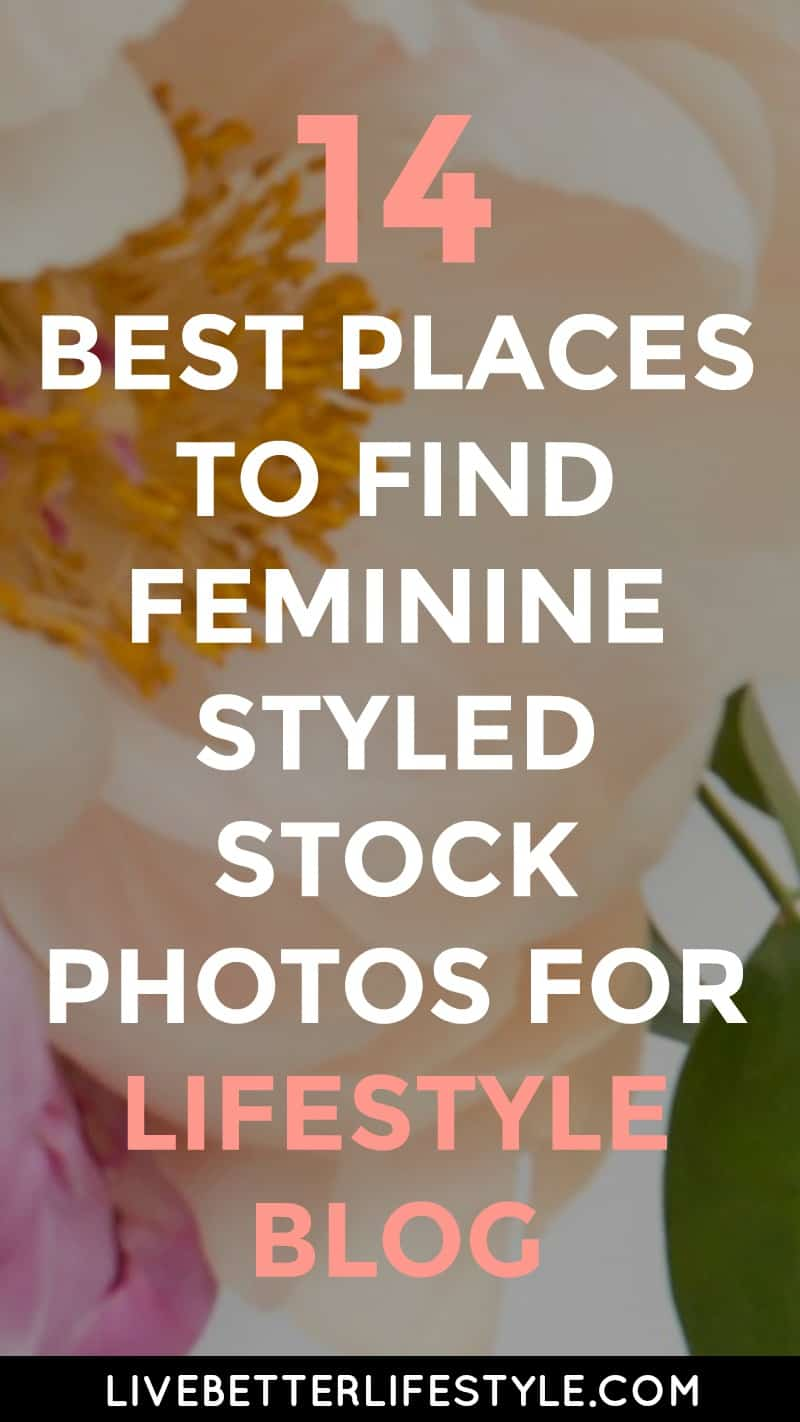 Best Places to Find Feminine Styled Stock Photos free or paid for lifestyle blog