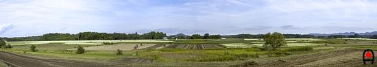 益子のそば畑を西側からのパノラマ写真