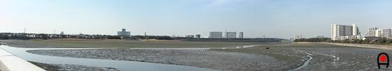 谷津干潟東側からの眺めの写真
