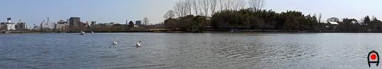 千波湖の写真