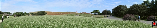 見晴らしの里付近から見たみはらしの丘の写真