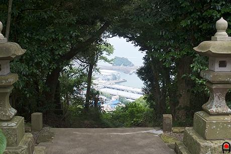 魚見塚浅間神社境内からの眺めの写真