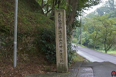 高宕山の生息地碑の写真