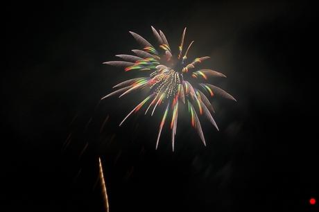 突起物の様な花火の写真