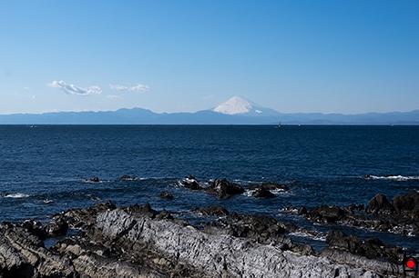 荒崎公園から富士山の写真