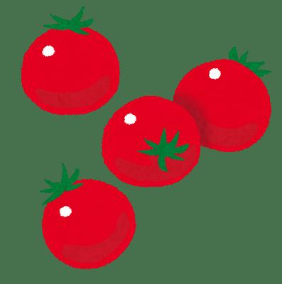 food_puchitomato