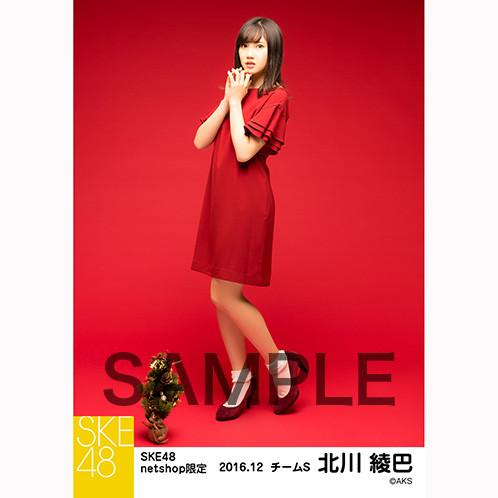 SK-126-1612-27024_p05_500
