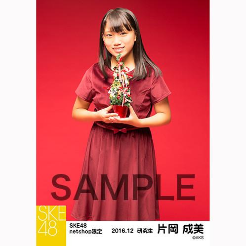 SK-126-1612-27075_p03_500