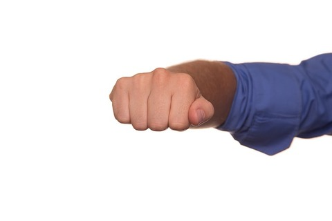 fist-424499_640