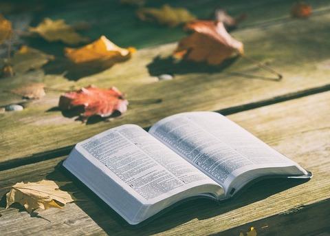 bible-1868070_640