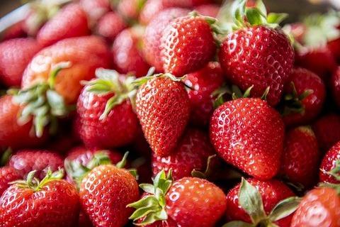 strawberry-5079237_640