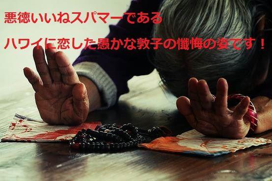 客室乗務員@ハワイに恋した敦子に注意 いいねスパマー ワイに恋した敦子の懺悔