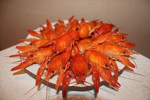 crayfish-3631928_1280_R