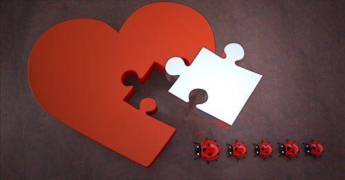 lucky_ladybug_hotion_separation-1203110_R
