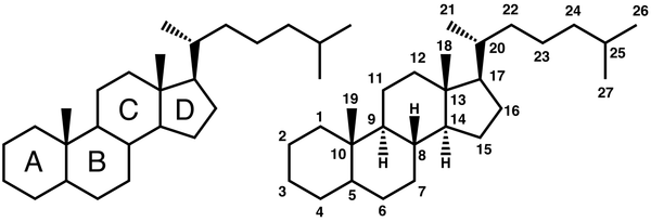 Steroid_numbering