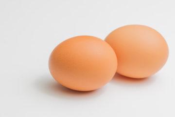 170618_egg_01-360x240