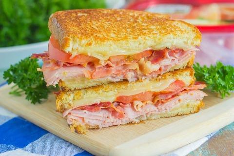 grilled-ham-cheese-sandwich-26-1024x683