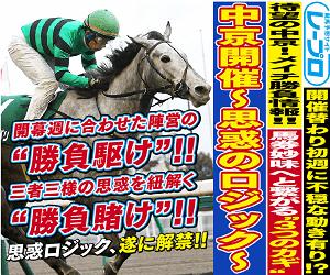 【バナー】レ―プロ_300x250