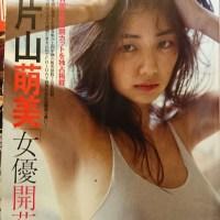 片山萌美(26)Gカップの乳輪丸見えショットがたまらんww【エロ画像】