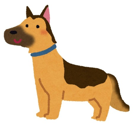 dog_german_shepherd