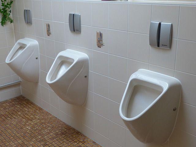 toilet-100783_640