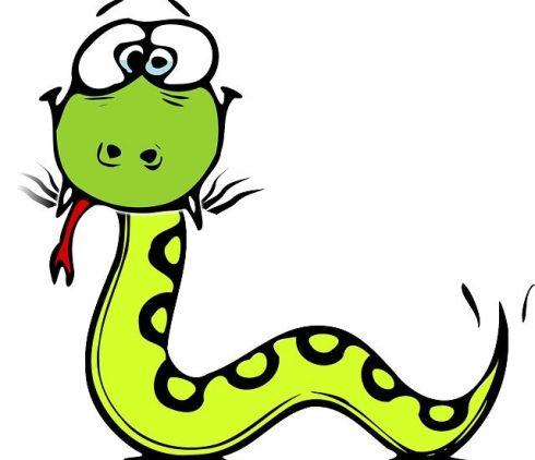 snake-312561_640