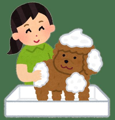 pet_shampoo_grooming