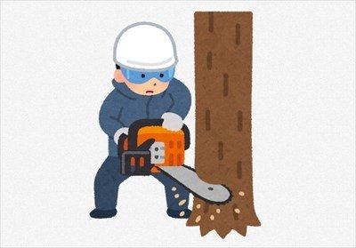 """【職レポ】""""林業従事者""""やが質問ある?"""