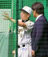 【阪神】吉兆データだ!今季、雨天中止の翌戦は5戦5勝金本監督「そうなればいいけど…」