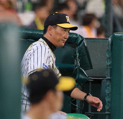 阪神・金本監督が辞任17年ぶり最下位で決断