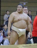 横野リポーター、貴ノ岩の処分を予想「1場所以上の出場停止は免れない」