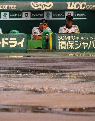 金本監督「しょうがないわね」阪神戦降雨ノーゲーム