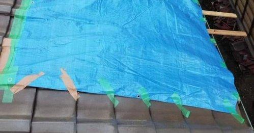 Image de Botakuri relative au trafic de feuilles bleues sur le toit du typhon de Chiba liée à la fraude-01