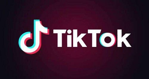 TikTok民 民度 に関連した画像-01