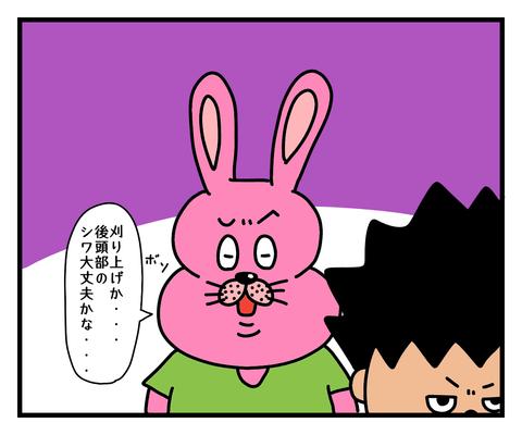 IMG_3132