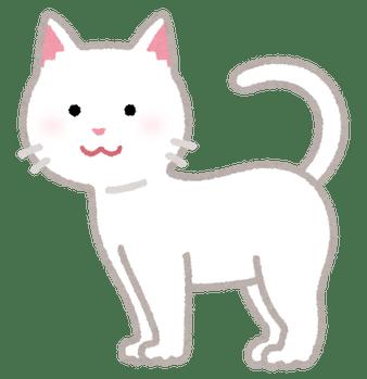 cat02_moyou_white