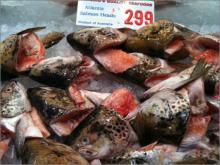 京井良彦の「3分間ビジネス・スクール」-head og fish
