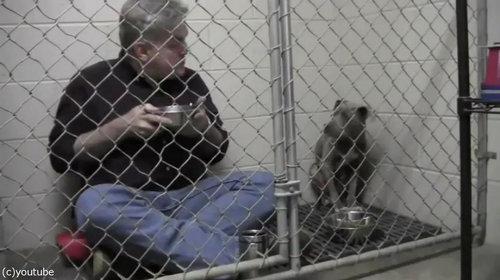 獣医がケージの中で犬と食事02