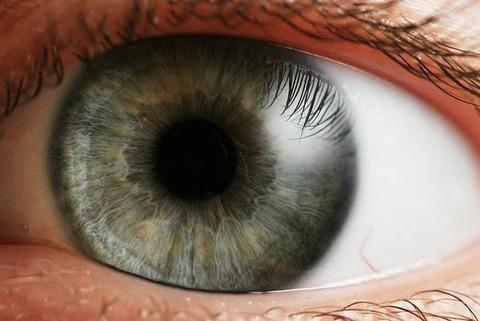 【衝撃】ワイの眼球、うっすら黄色に…なんなんこれ…