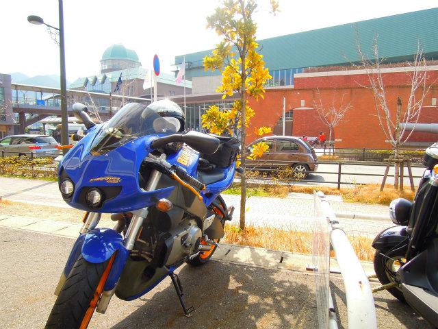 bike1521