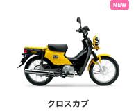btn_bike_crosscub