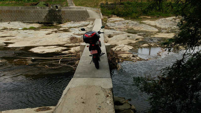 bike_1395920969_7903_m