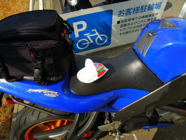 bike1519